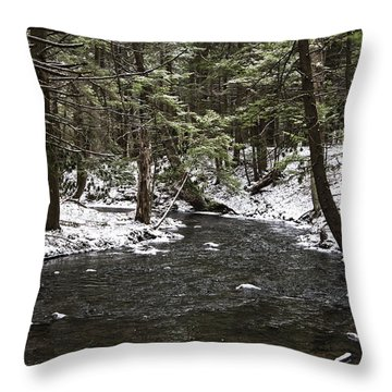 Moscow High School Nature Trail Throw Pillow