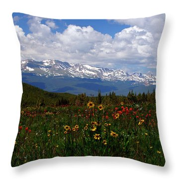 Mosquito Sunflowers Throw Pillow by Jeremy Rhoades