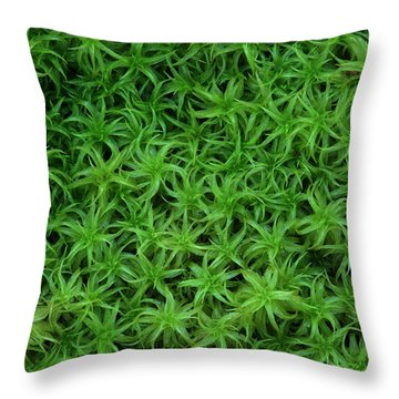 Moss Throw Pillow by Daniel Reed
