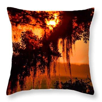 Moss Meets Sun  Throw Pillow