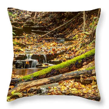 Mossy Log And Stream Throw Pillow