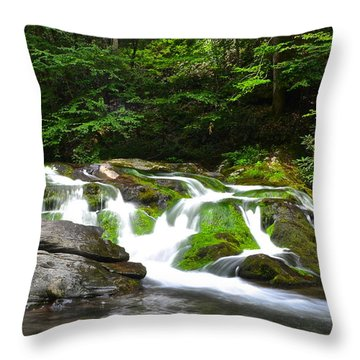 Mossy Mountain Falls Throw Pillow by Frozen in Time Fine Art Photography