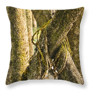 Mossy Pier Throw Pillow by Ernest Puglisi