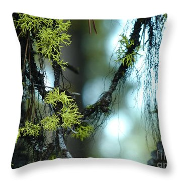Mossy Playground Throw Pillow