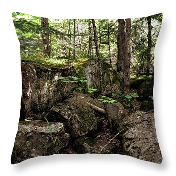 Mossy Rocks In The Forest Throw Pillow by Michelle Calkins