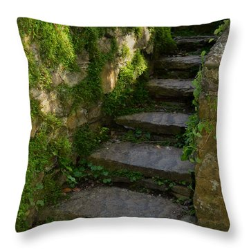 Mossy Steps Throw Pillow by Carla Parris