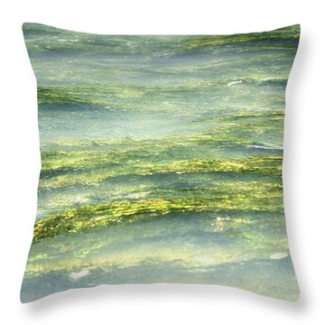 Mossy Tranquility Throw Pillow by Melanie Lankford Photography