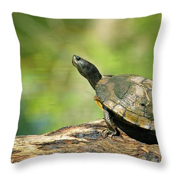 Mossy Turtle Throw Pillow