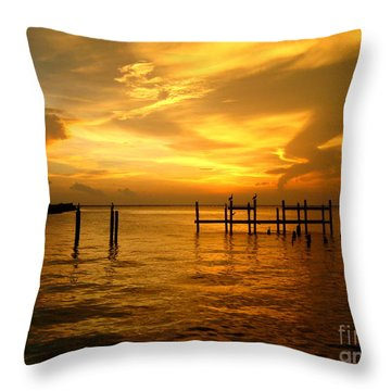 Throw Pillow featuring the photograph Most Venerable Sunset by Kathy Bassett