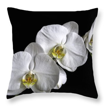 Moth Orchid Trio Throw Pillow
