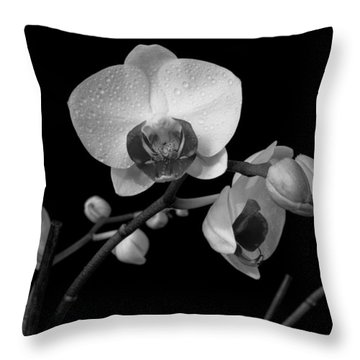 Moth Orchids Throw Pillow