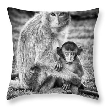 Mother And Baby Monkey Black And White Throw Pillow by Adam Romanowicz