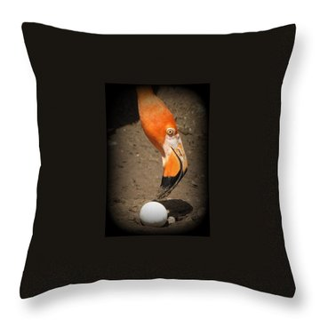 Throw Pillow featuring the photograph Mother And Child by Beth Vincent