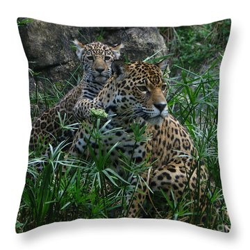 Mother And Child Throw Pillow by Greg Patzer