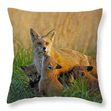 Mother Fox And Kits Throw Pillow