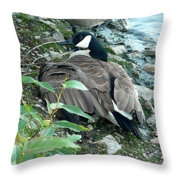 Mother Goose Throw Pillow by Nicki Bennett