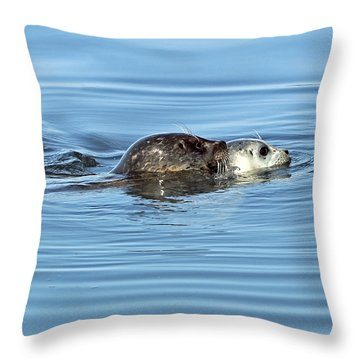 Throw Pillow featuring the photograph Mother Harbor Seal And Pup by Susan Wiedmann