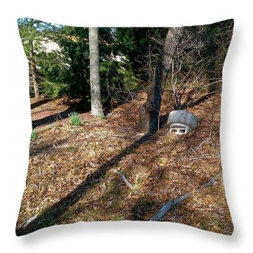 Mother Nature Throw Pillow by Amazing Photographs AKA Christian Wilson