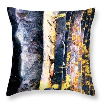 Mother Natures Aspen Abstract Art Throw Pillow