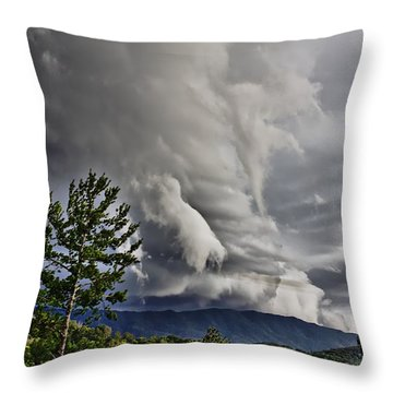 Mother Nature Showing Off V2 Throw Pillow