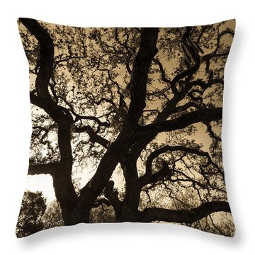 Mother Nature's Design Throw Pillow