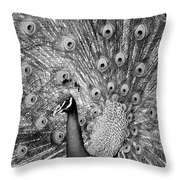 Mother Natures Fireworks Throw Pillow by Karen Wiles
