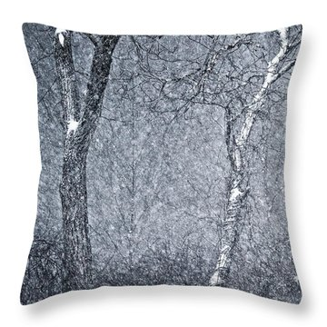 Mother Nature's Howl Throw Pillow by Joan Davis