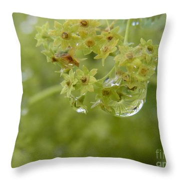 Throw Pillow featuring the photograph Mother's Blessing by Agnieszka Ledwon