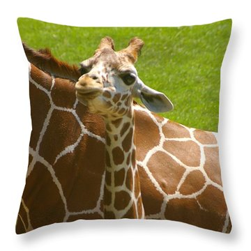 Throw Pillow featuring the photograph Mother's Child by Randy Pollard