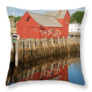 Throw Pillow featuring the photograph Motif 1 With Reflection by Richard Bryce and Family