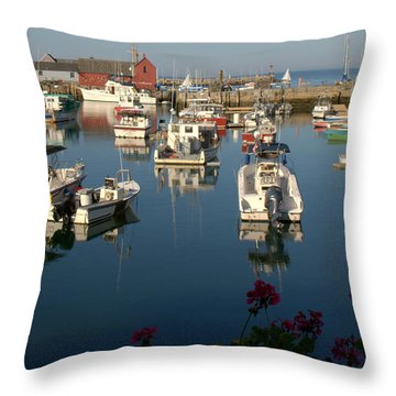 Throw Pillow featuring the photograph Motif  And Friends by Caroline Stella