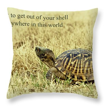 Motivating A Turtle Throw Pillow by Robert Frederick