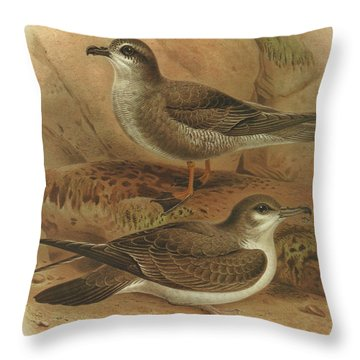 Mottled Petrel And Buller's Shearwater Throw Pillow
