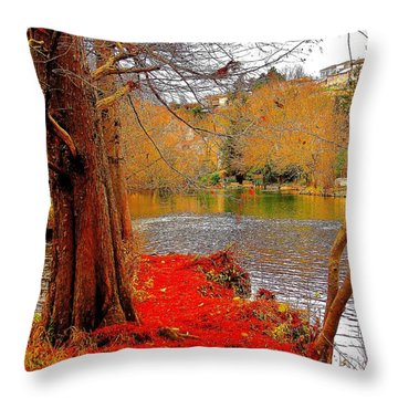 Moulin De Chasseigne Throw Pillow