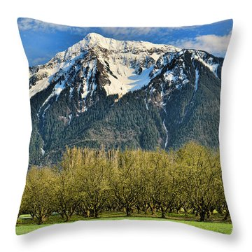 Mount Cheam From The Hazlenut Grove Agassiz Bc Throw Pillow by Lawrence Christopher