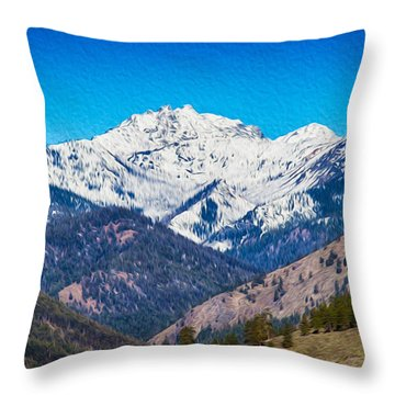 Mount Gardner Close Up Throw Pillow by Omaste Witkowski