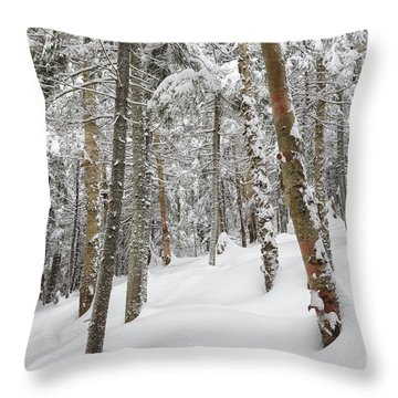 Mount Jim - Kinsman Notch New Hampshire Usa  Throw Pillow