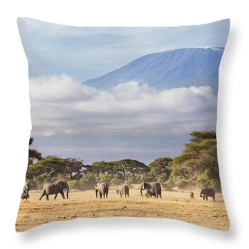 Mount Kilimanjaro Amboseli  Throw Pillow