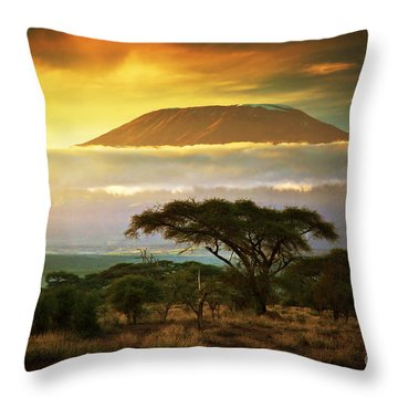 Mount Kilimanjaro Savanna In Amboseli Kenya Throw Pillow