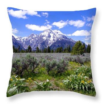 Mount Moran Wildflowers Throw Pillow by Brian Harig