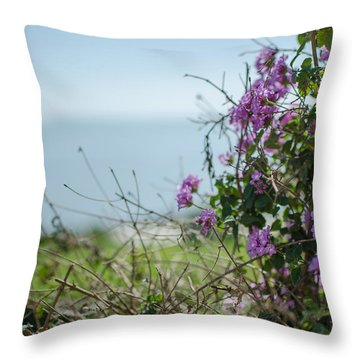 Mount Of Beatitudes Throw Pillow