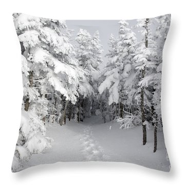 Mount Osceola Trail - White Mountains New Hampshire Throw Pillow