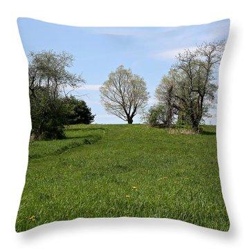 Mount Pollux Throw Pillow by Randi Shenkman