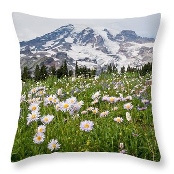 Mount Rainier And A Meadow Of Aster Throw Pillow by Jeff Goulden