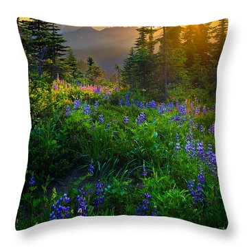 Mount Rainier Sunburst Throw Pillow