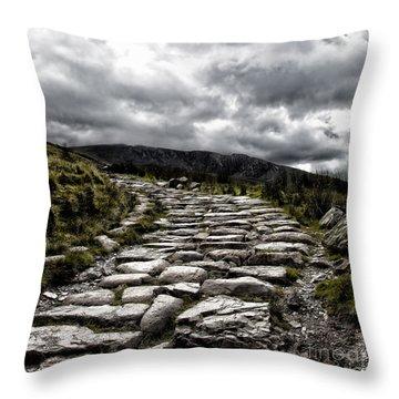 Mount Snowdon Path Throw Pillow by Jane Rix