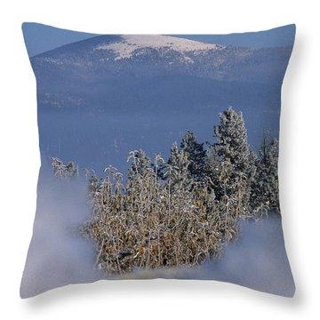 Mount Spokane Throw Pillow by Sharon Elliott