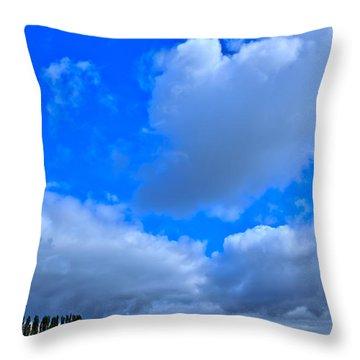 Mount Vernon Farm In Washington State Throw Pillow
