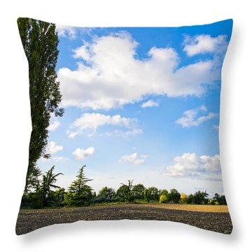 Mount Vernon Farmland II Throw Pillow
