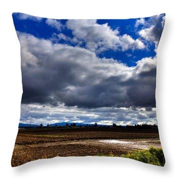 Mount Vernon Farmland - Washington State Throw Pillow